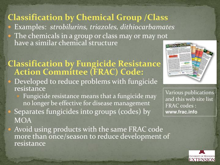 fungicide resistance phase committee group essay