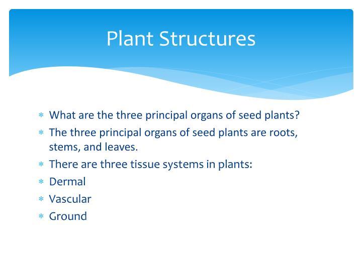 Plant Structures
