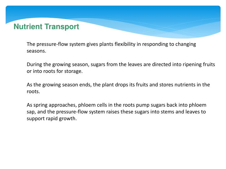 Nutrient Transport