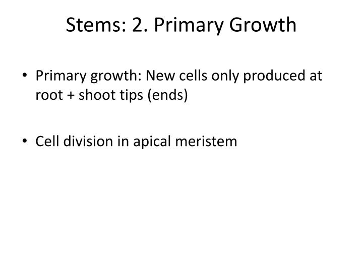 Stems: 2. Primary Growth