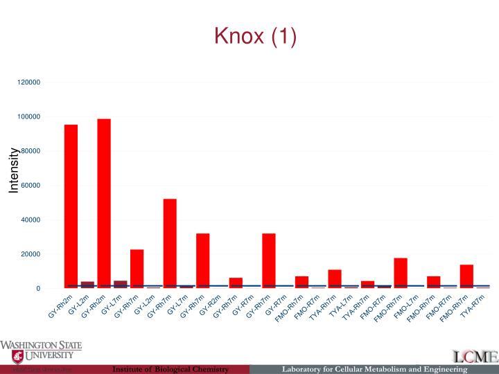 Knox (1)