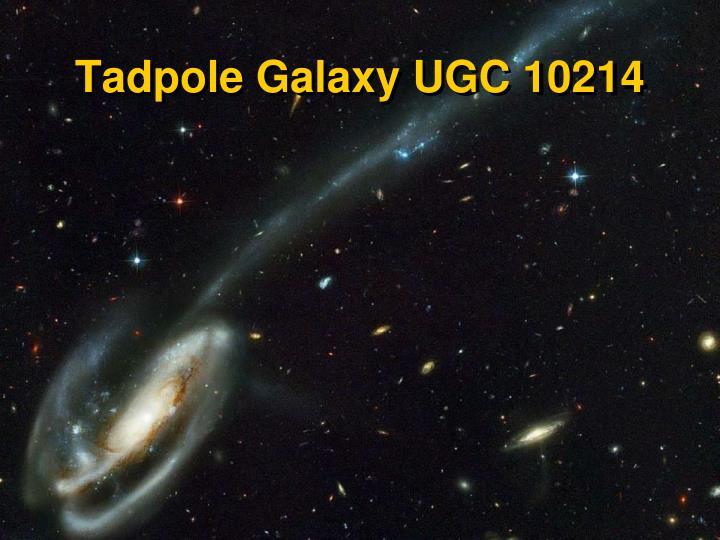 Tadpole Galaxy UGC 10214