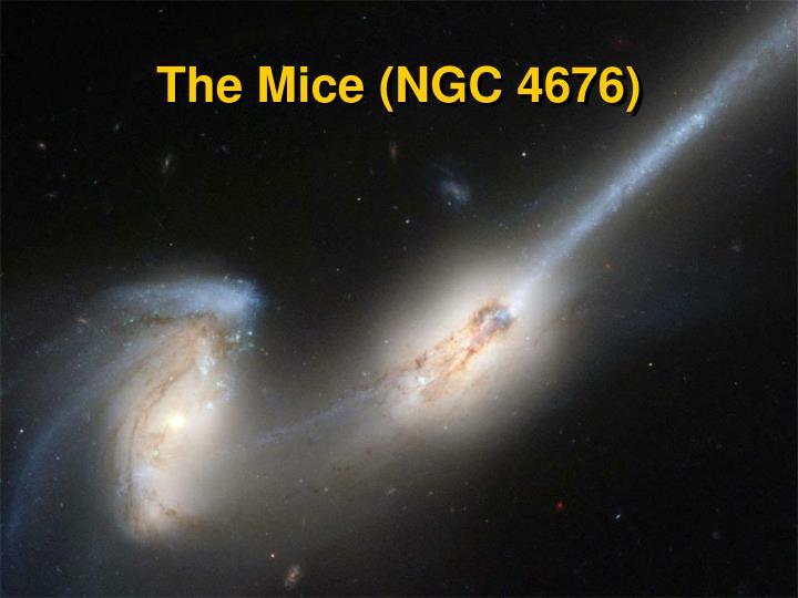 The Mice (NGC 4676)