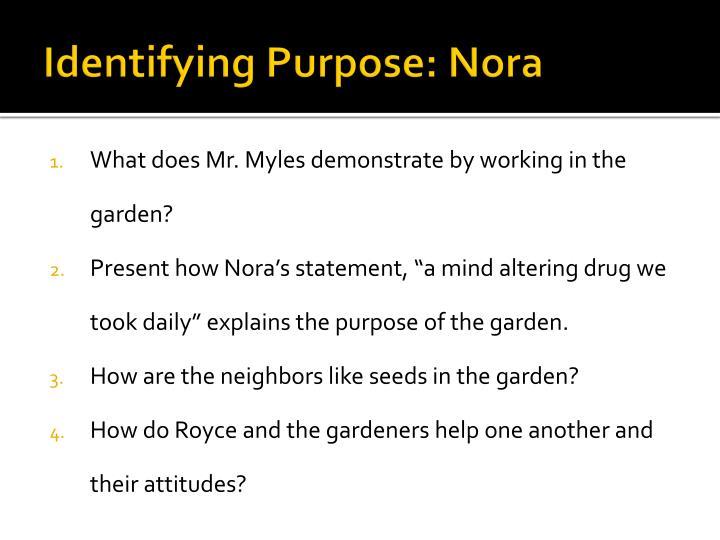 Identifying Purpose: Nora