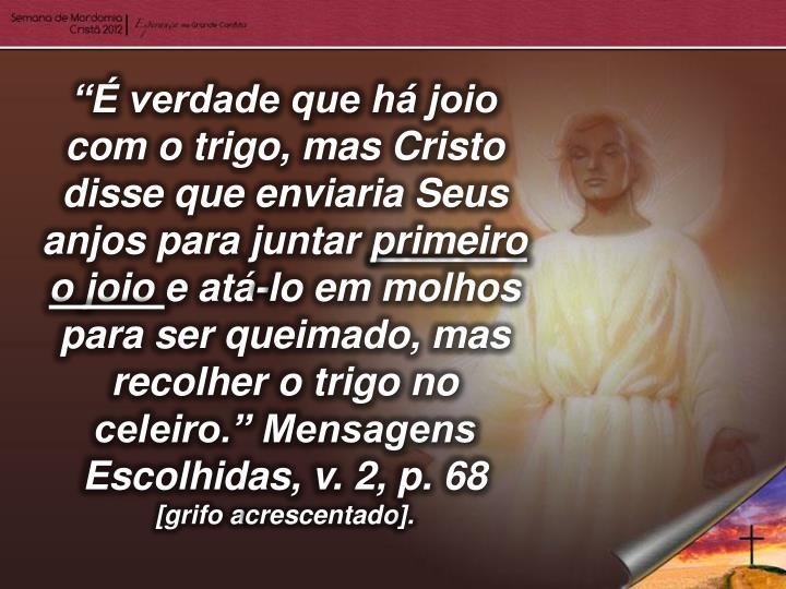 """""""É verdade que há joio com o trigo, mas Cristo disse que enviaria Seus anjos para juntar"""