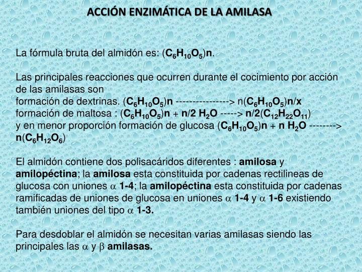 ACCIÓN ENZIMÁTICA DE LA AMILASA