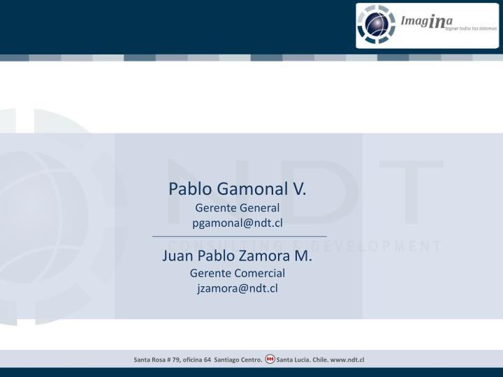 Pablo Gamonal V.