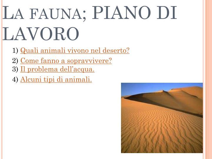 PPT - I DESERTI CALDI; LA FAUNA & LA FLORA PowerPoint Presentation ...