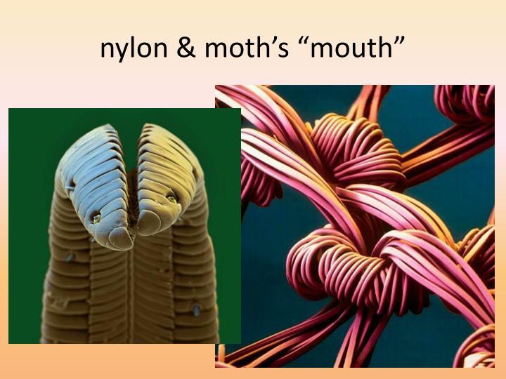 "nylon & moth's ""mouth"""