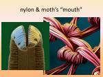 nylon moth s mouth