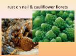r ust on nail cauliflower florets