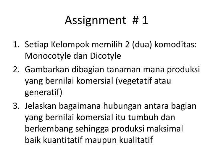 Assignment  # 1