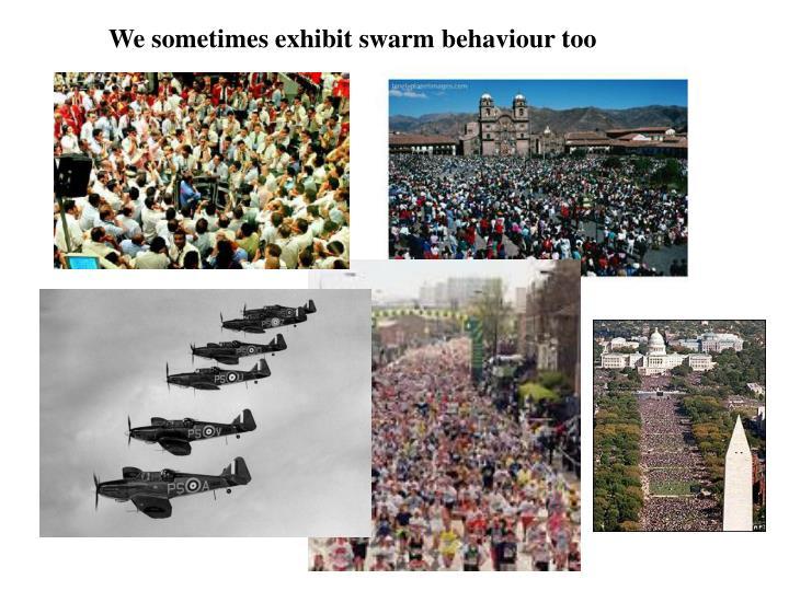 We sometimes exhibit swarm behaviour too