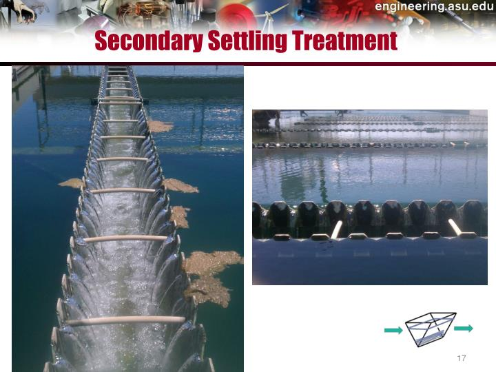 Secondary Settling Treatment