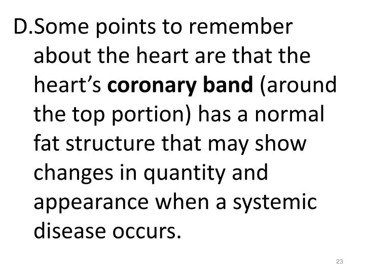 Some points to remember about the heart are that the heart's
