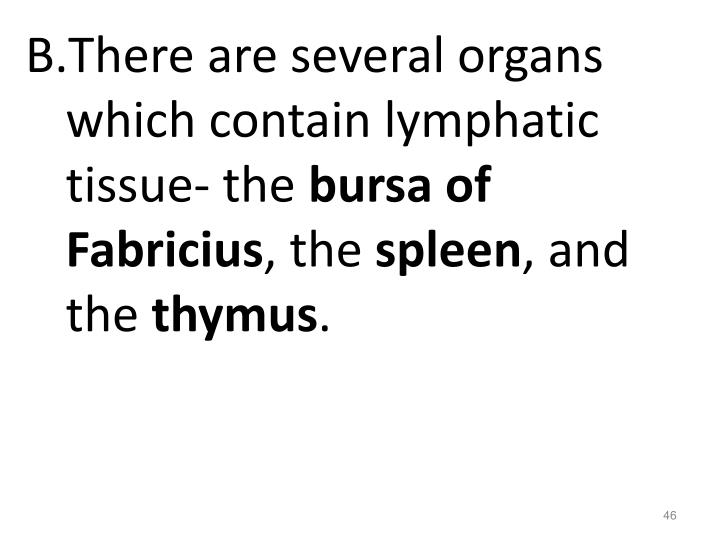 There are several organs which contain lymphatic tissue- the