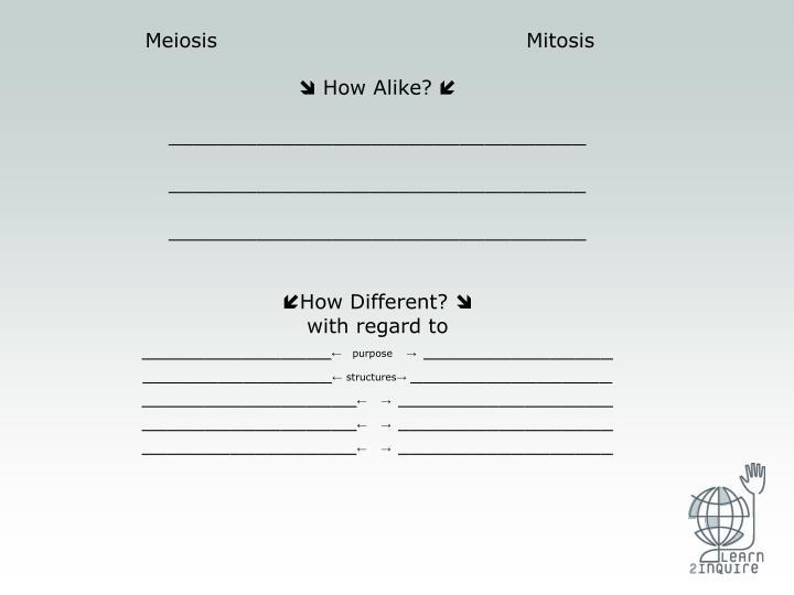 Meiosis                                            Mitosis