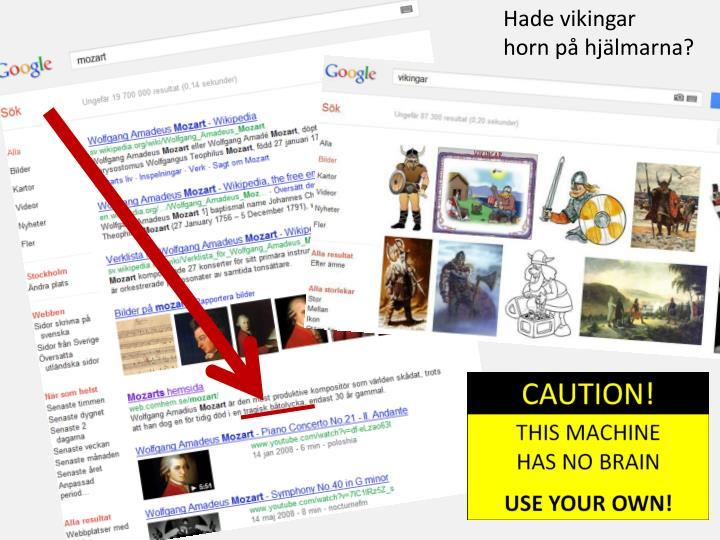 Hade vikingar