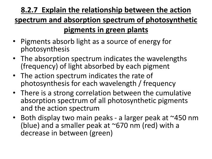 8.2.7  Explain the relationship between the action spectrum and absorption spectrum of photosynthetic pigments in green plants