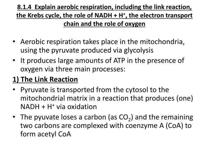 8.1.4  Explain aerobic respiration, including the link reaction, the Krebs cycle, the role of NADH + H