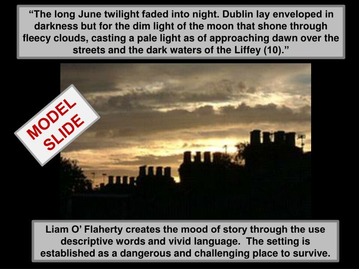 """""""The long June twilight faded into night. Dublin lay enveloped in darkness but for the dim light of the moon that shone through fleecy clouds, casting a pale light as of approaching dawn over the streets and the dark waters of the"""