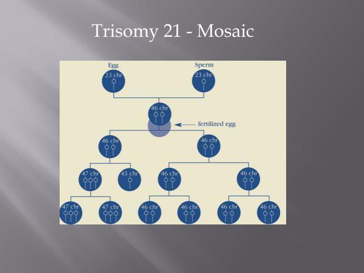 Trisomy 21 - Mosaic