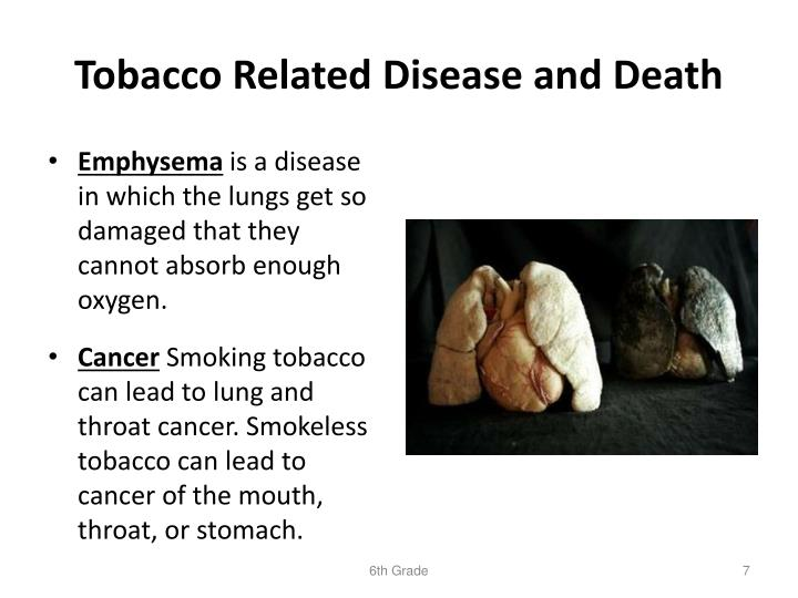 Tobacco Related Disease and Death