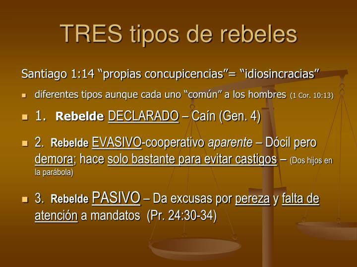 TRES tipos de rebeles