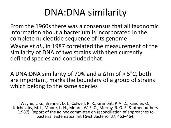 DNA:DNA similarity