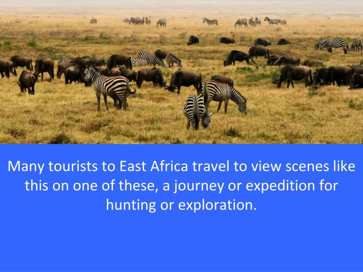 Many tourists to East Africa travel to view scenes like this on one of these, a journey or expedition for hunting or exploration.