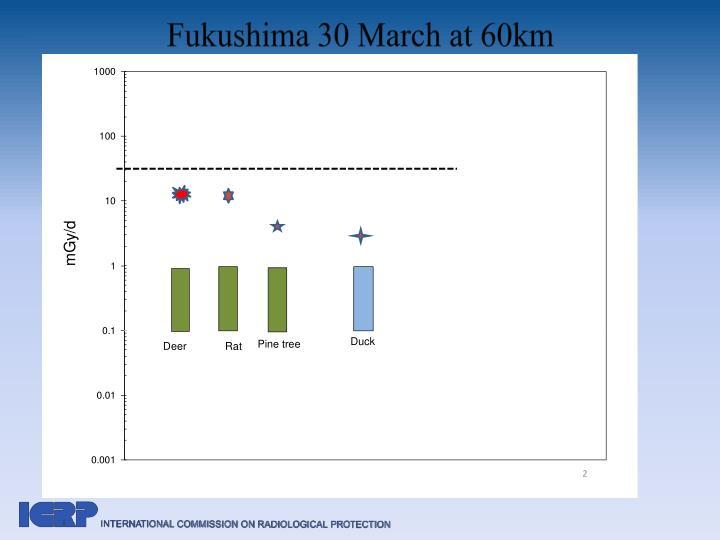 Fukushima 30 March at 60km