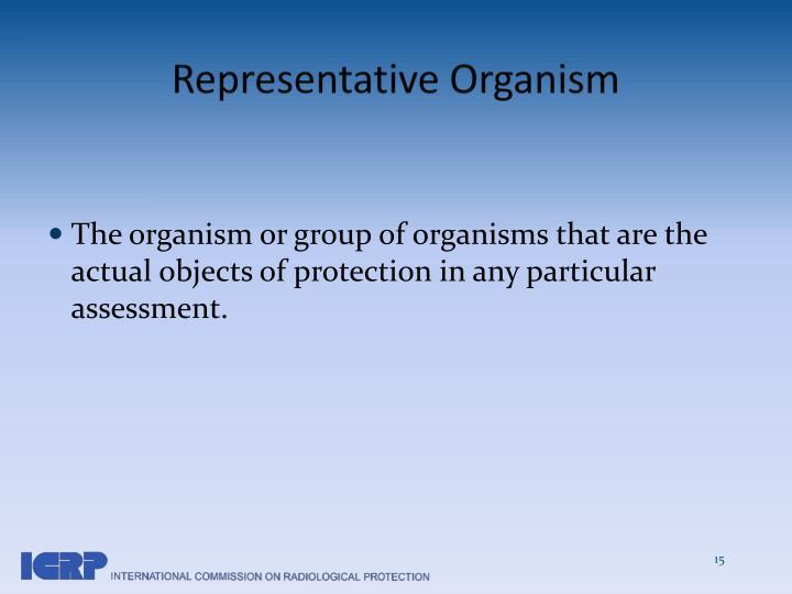 Representative Organism