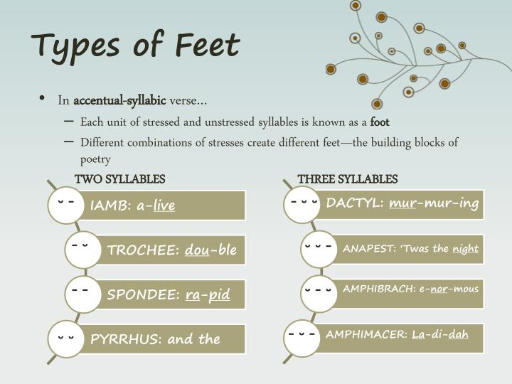 Types of Feet