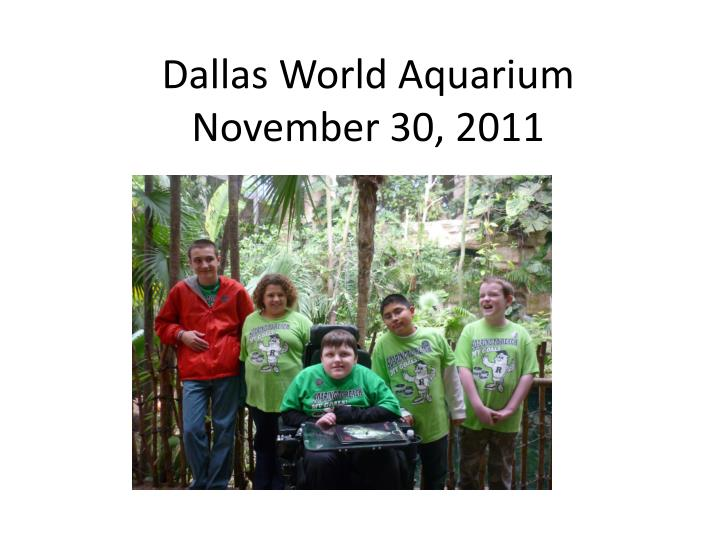 Dallas world aquarium november 30 2011
