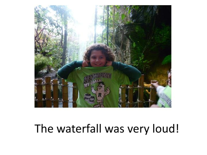 The waterfall was very loud!
