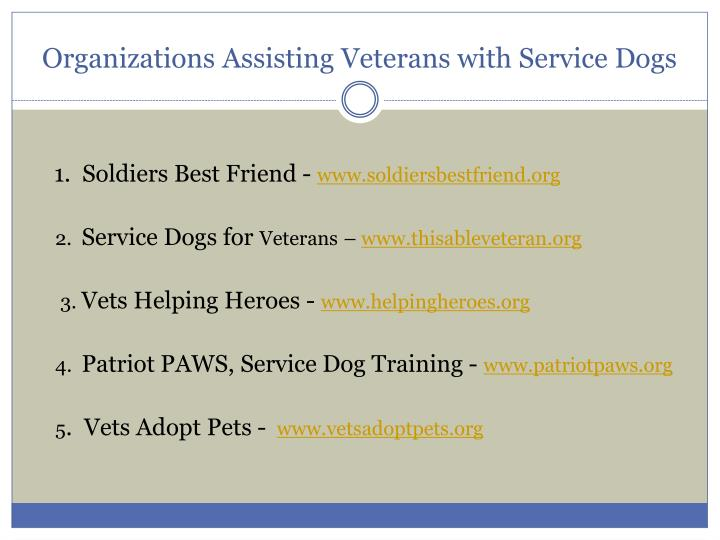 Organizations Assisting Veterans with Service Dogs