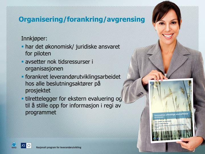 Organisering/forankring/avgrensing