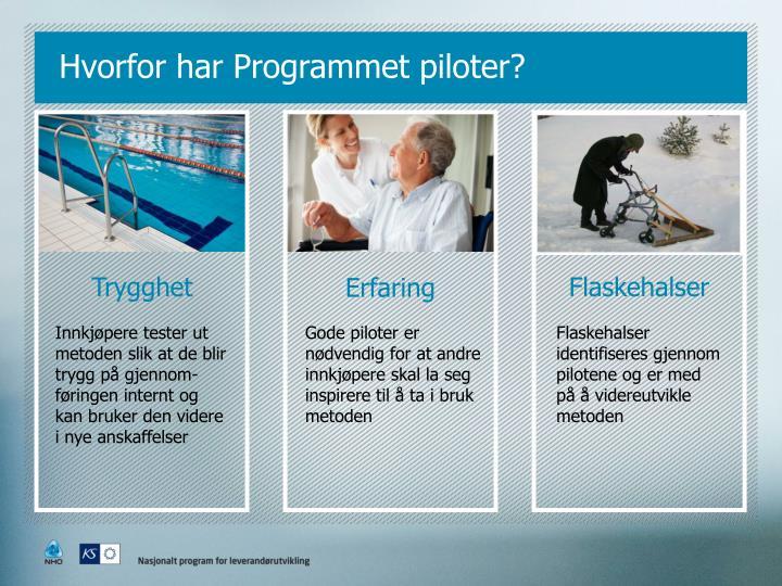 Hvorfor har Programmet piloter?