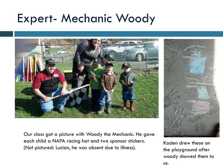 Expert- Mechanic Woody