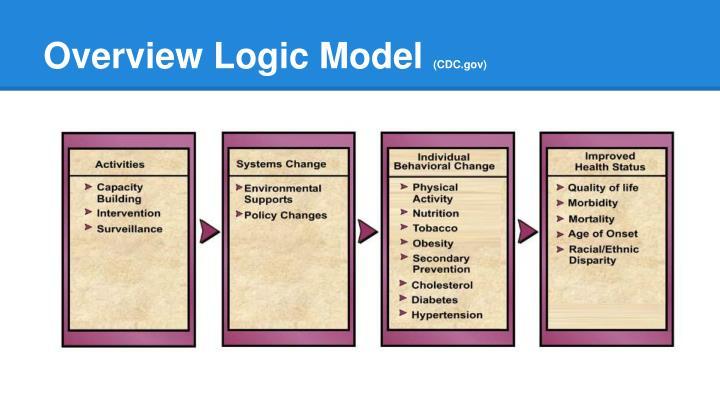 Overview Logic Model