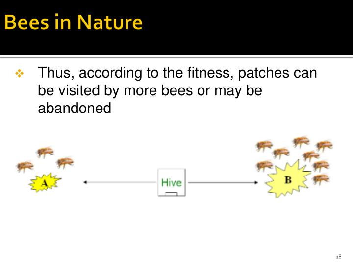 Bees in Nature