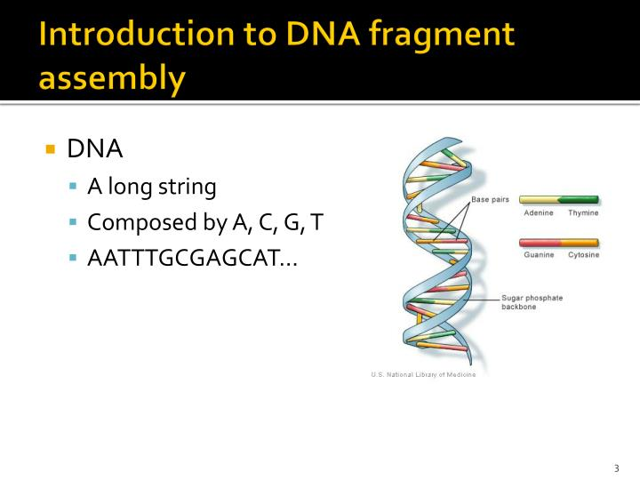 Introduction to dna fragment assembly