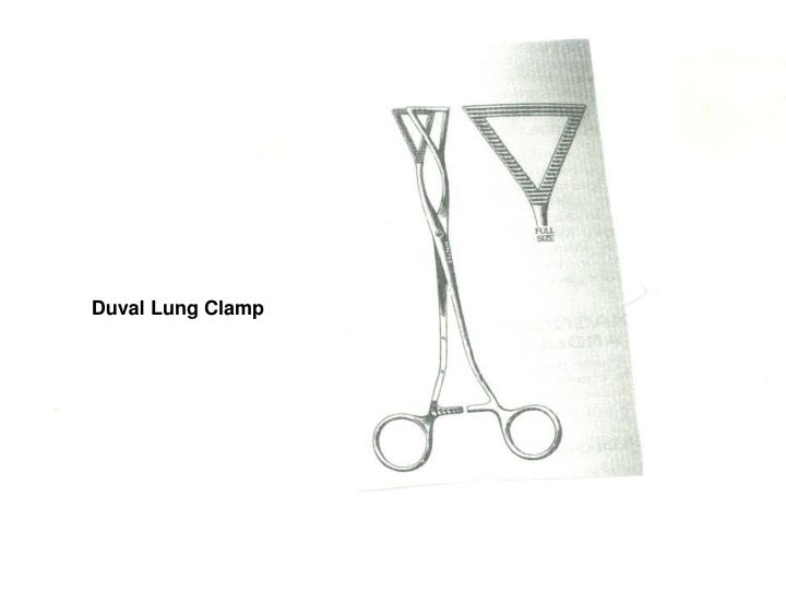 Duval Lung Clamp