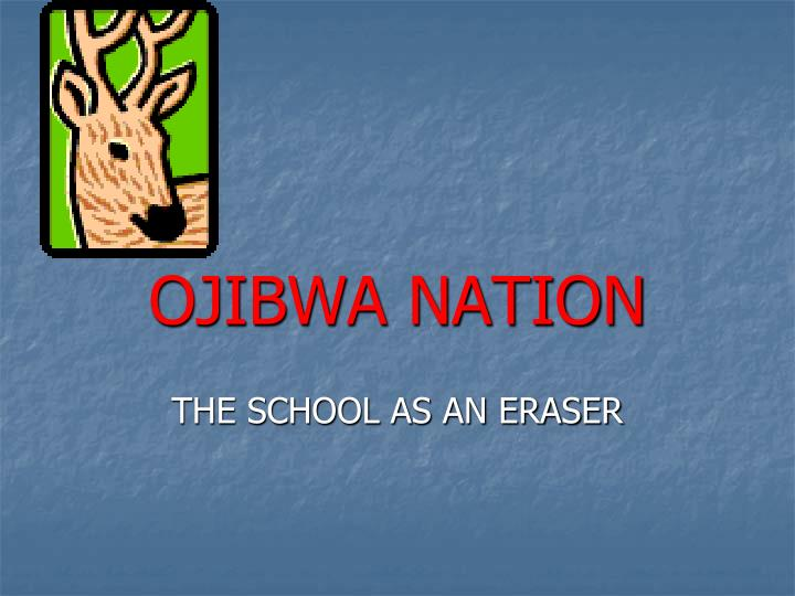 Ojibwa nation