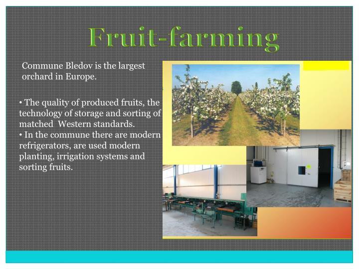 Fruit-farming