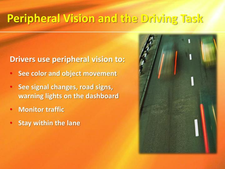 Peripheral Vision and the Driving Task