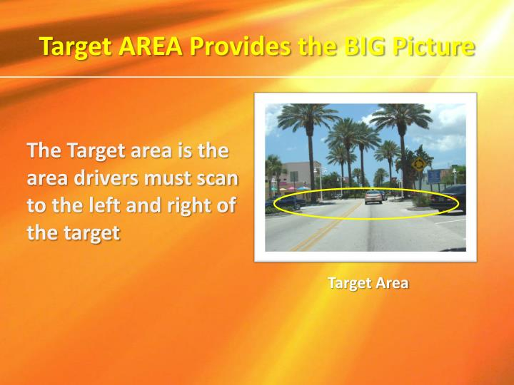 Target AREA Provides the BIG Picture