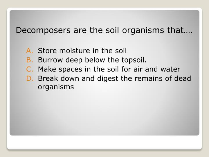 Decomposers are the soil organisms