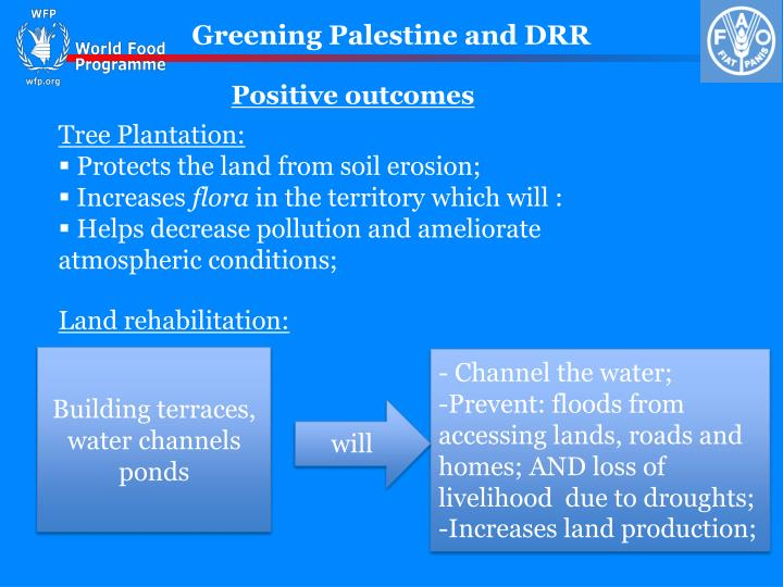 Greening Palestine and DRR