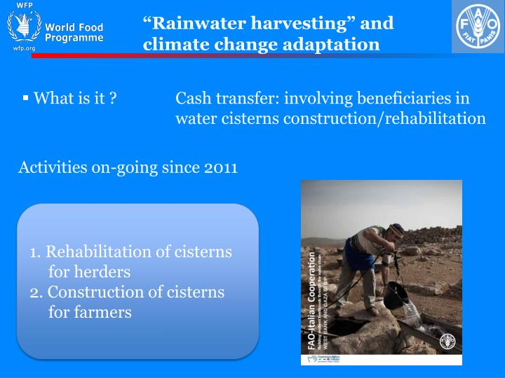 """Rainwater harvesting"" and climate change adaptation"